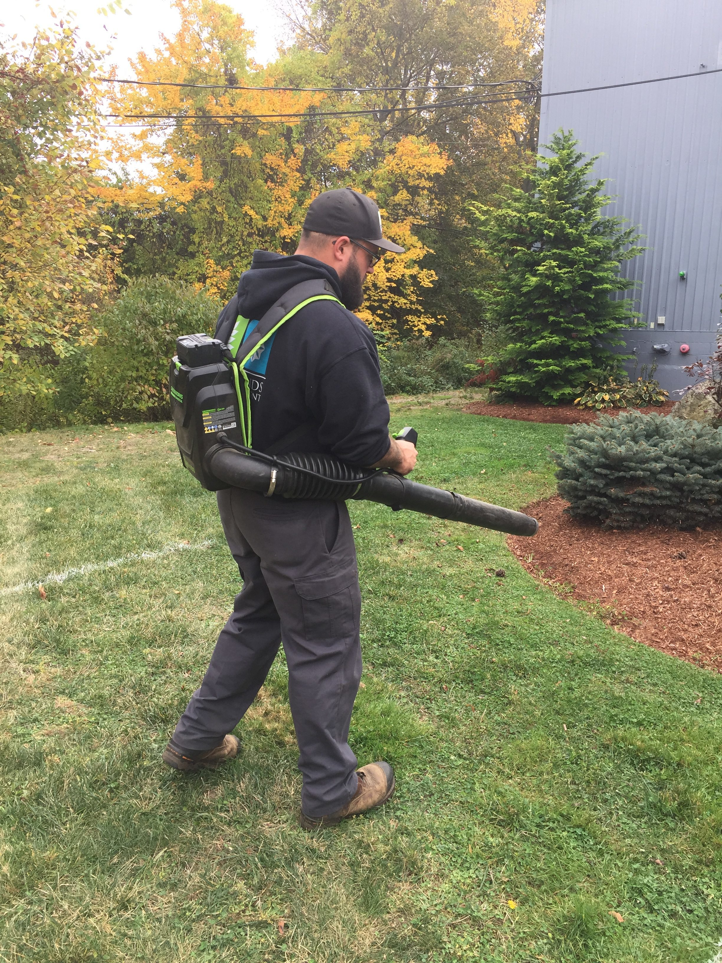 3 Reasons to Implement Electric Leaf Blowers