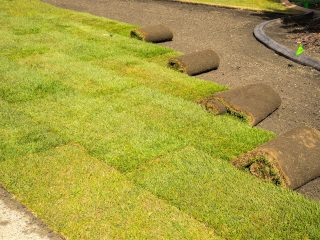 Planting and Turf Installation