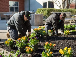Seasonal Landscape Maintenance Plans